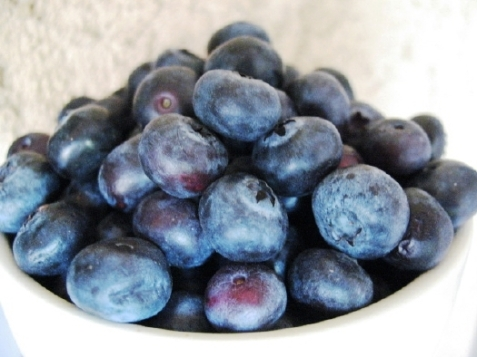 blueberries_bowl-2