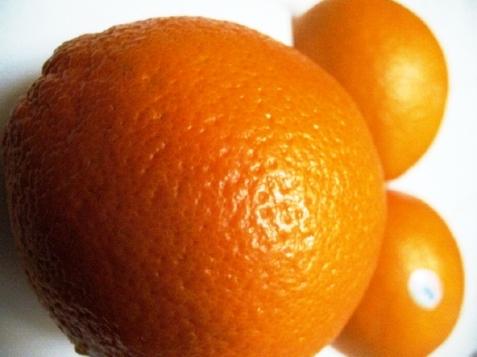 oranges-2-copy