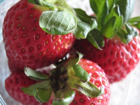 strawberries_fresh-48
