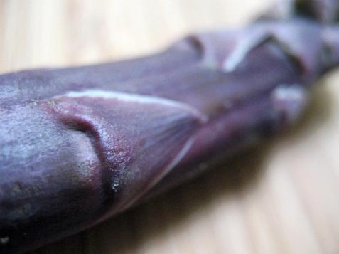 asparagas_purple-30