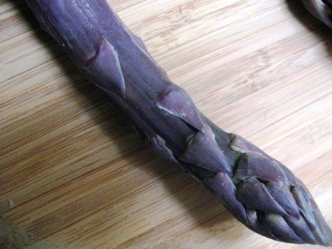 asparagas_purple-31