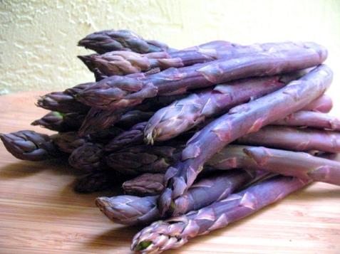 asparagas_purple-53