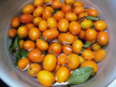 kumquats_bowl-copy