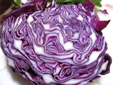 purple-cabbage-2