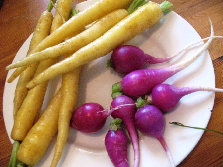 yellow-carrots_purple-radishes-3