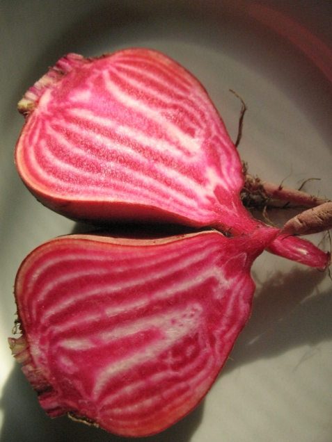 Beets_striped_cut (21)