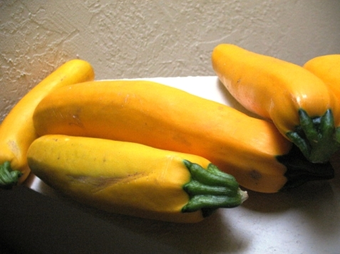 Summer-Yellow-Zucchini (4)